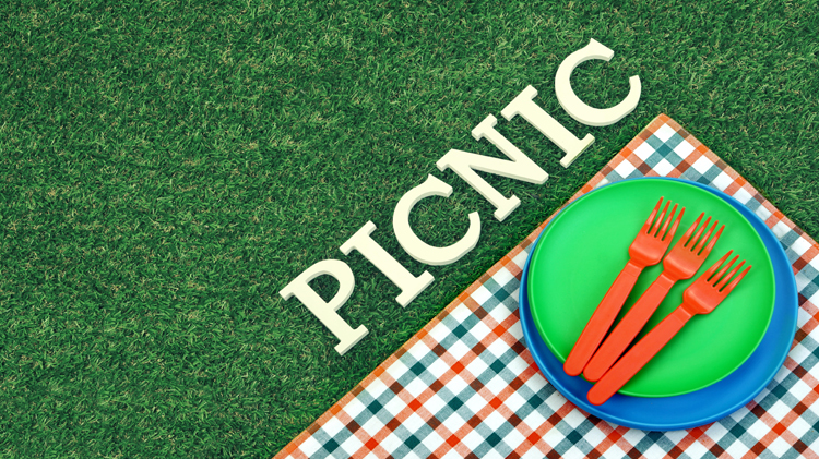 Youth Sports Picnic