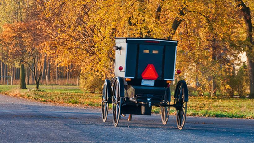 Amish Experience