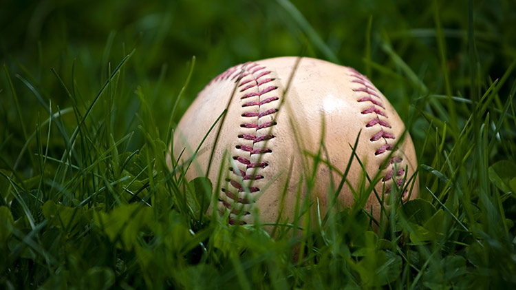 2019 Spring T-Ball / Baseball Series