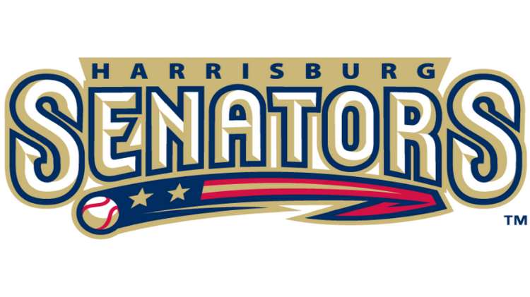 Wizards Night - Harrisburg Senators Baseball